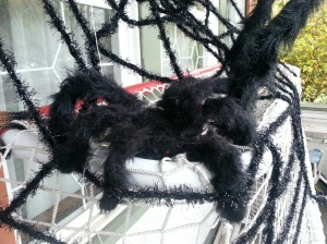 Spider in Halloween display