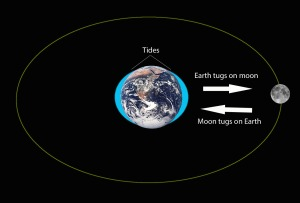 moon earth gravity tides