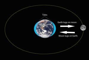 moon earth gravity tides